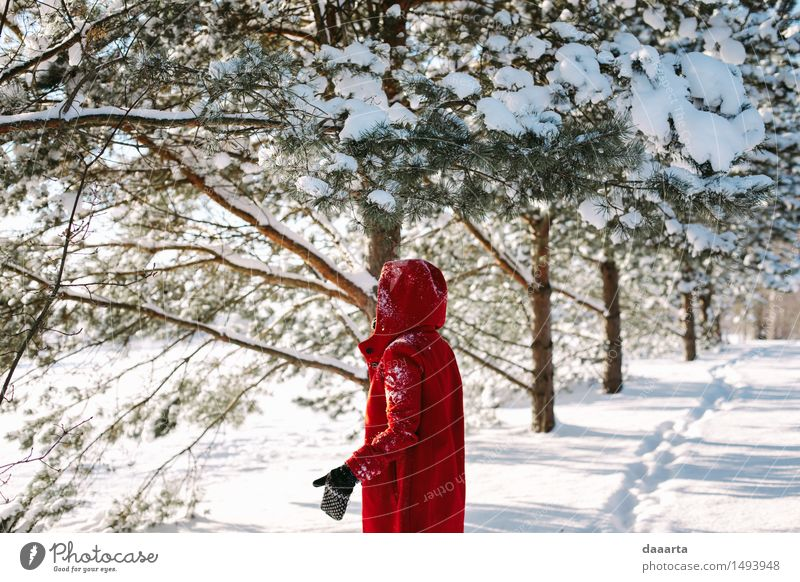 under snow branches Relaxation Red Joy Winter Life Snow Feminine Style Playing Lifestyle Moody Wild Leisure and hobbies Elegant Happiness Trip