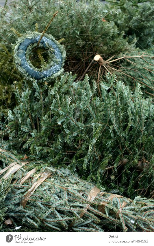 from the tree Christmas & Advent Tree To dry up Old Green Squander Decline Transience Christmas tree Throw away Dispose of Christmas wreath Heap Stack