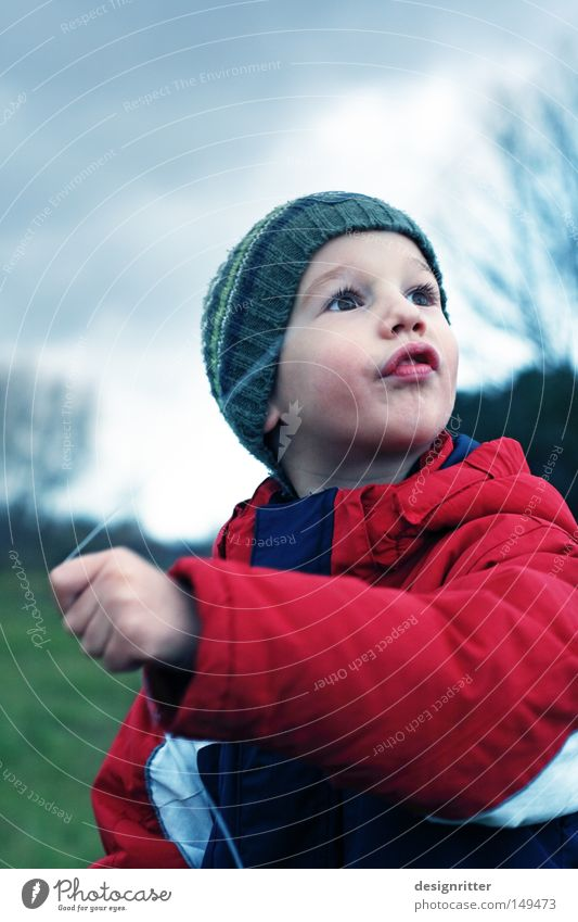 dragon tamer Child Boy (child) Jacket Cap November Autumn Autumnal weather Weather Clouds Wind Gale Passion Cold Wet Comfortless Dark Dreary Dragon Kite