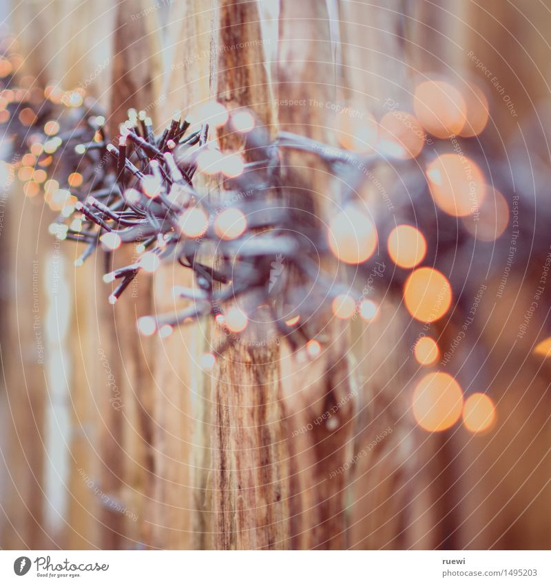 light chain Christmas & Advent Deserted Fence Fence post Wooden fence Fairy lights Lamp Plastic Illuminate Brown Yellow Winter Winter mood Embellish