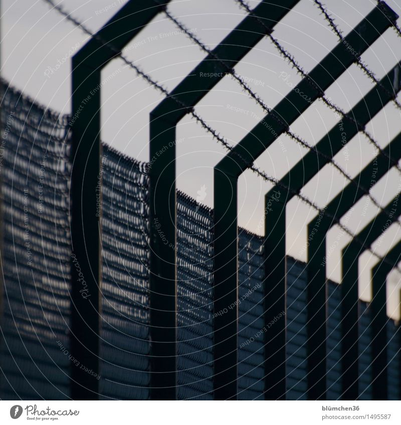 Sure !?! Barbed wire Barbed wire fence Barrier Border Testing & Control Wire netting fence Border area Fence Metal Threat Dark Escape Dismissive Exclusion zone