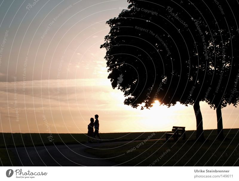 Human being Nature Tree Adults Life Movement Couple 2 Together Contentment Leisure and hobbies Walking Hiking In pairs Bench Posture