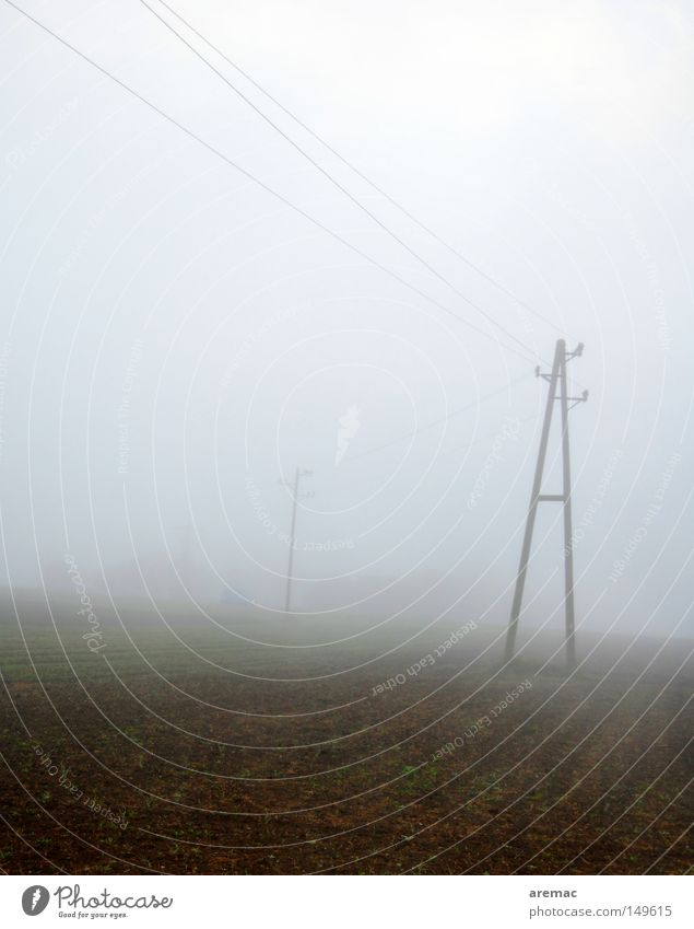 A in fog Fog Morning November Moody Telegraph pole Cable Field Autumn
