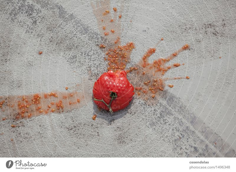 tomato Vegetable Tomato Trashy Gray Red Sludgy Skid marks Asphalt Adversity Throw away Food Surplus Colour photo Exterior shot Close-up Day Bird's-eye view