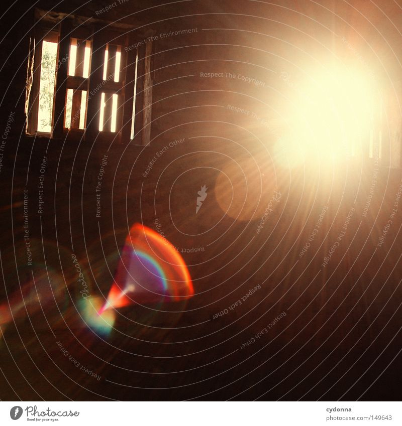 Old Sun Loneliness Colour Wall (building) Emotions Window Building Room Lighting Background picture Closed Broken Tracks Transience Mysterious