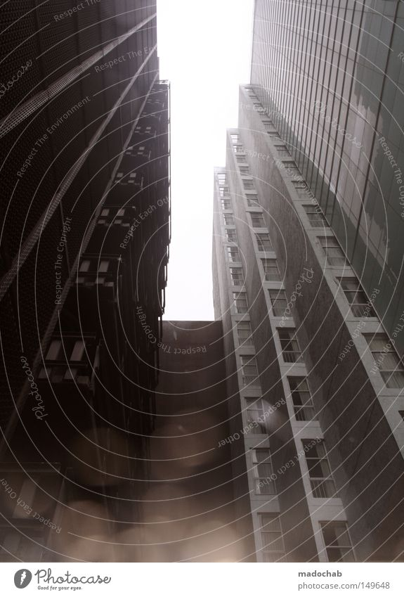URBANLOVE™ SOBE High-rise Building Life Living or residing Gray Town Gloomy Miami Architecture skyhigh Drops of water reflection city jungle urban olive