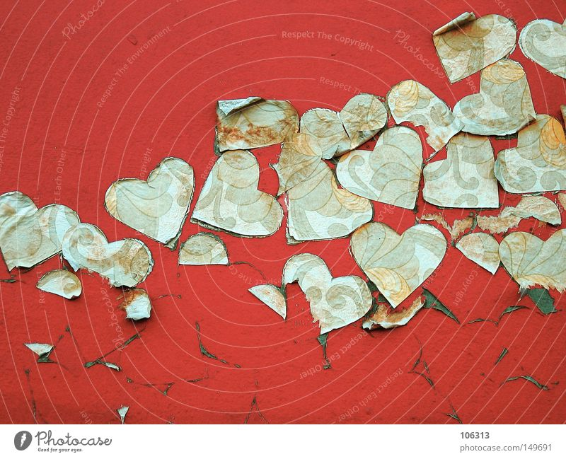Old Beautiful Red Colour Leaf Love Graffiti Life Wall (building) Emotions Dye Contentment Heart Multiple Broken Many