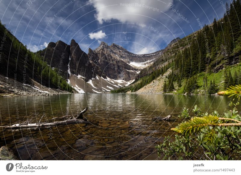 Lake Agnes Vacation & Travel Tourism Trip Adventure Summer Hiking Nature Landscape Plant Forest Mountain Rocky Mountains Peak Glacier Canada Beautiful Blue