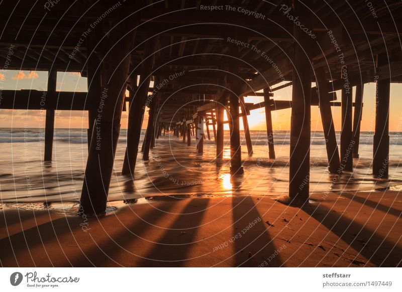 Under the San Clemente pier at sunset Nature Vacation & Travel Blue Summer Water Sun Ocean Landscape Clouds Beach Architecture Natural Coast Freedom Brown Sand
