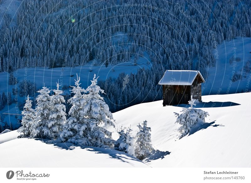 The first snow - Juche! Fiss Ladis Austria Park Winter Shows Mountain Landscape Snowscape Federal State of Tyrol Deep snow Idyll Love of winter Winter's day