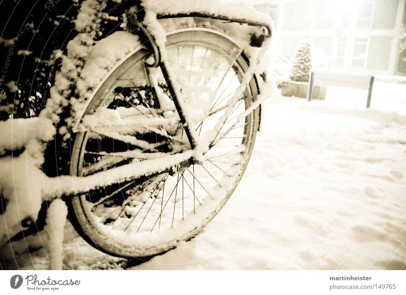Wheel in the snow Bicycle Snow Winter Snowflake Snowfall Cold Calm Storm Withdraw Spokes Ice
