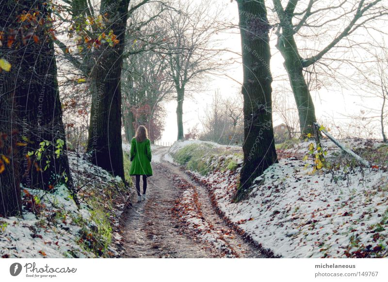 stay for a while Green Coat Tree Snow Lanes & trails Street Sky Far-off places Blonde Beautiful Esthetic Tracks Cold Gray Patch Forest Leaf Goodbye 4 Paradise