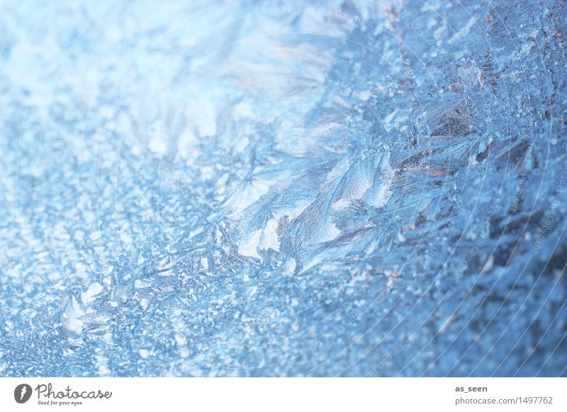 Christmas & Advent Blue Beautiful Colour White Winter Cold Snow Style Moody Bright Design Glittering Weather Ice Illuminate