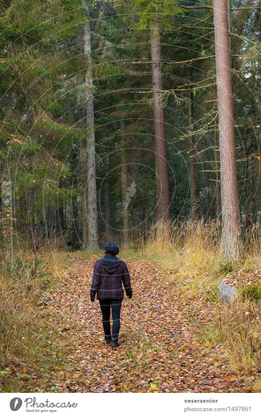 Human being Woman Nature Tree Relaxation Loneliness Calm Dark Forest Adults Sadness Emotions Autumn Lanes & trails Movement Natural