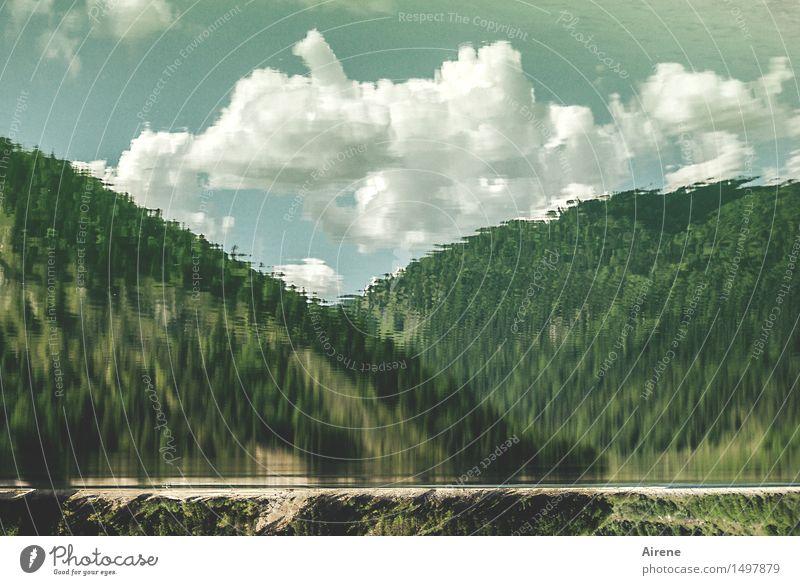 Comic   blubb blubb Nature Landscape Water Sky Clouds Forest Hill Alps Mountain Lakeside Reservoir Mountain lake Cistern Bavaria Wet Crazy Blue Green