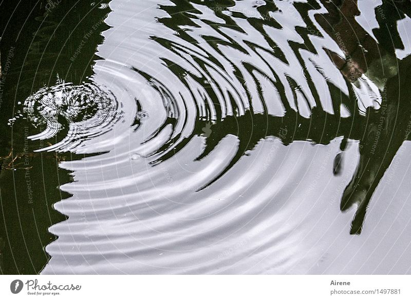 Water White Black Cold Movement Power Waves Communicate Drops of water Circle Wet Sign Round Elements Drop Target