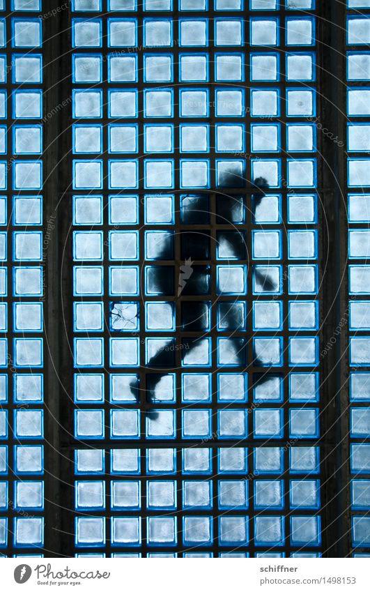Human being Blue Death Jump Masculine Lie Body Grief Sudden fall Distress Accident Criminality Murder Suicide Anguish Crime thriller