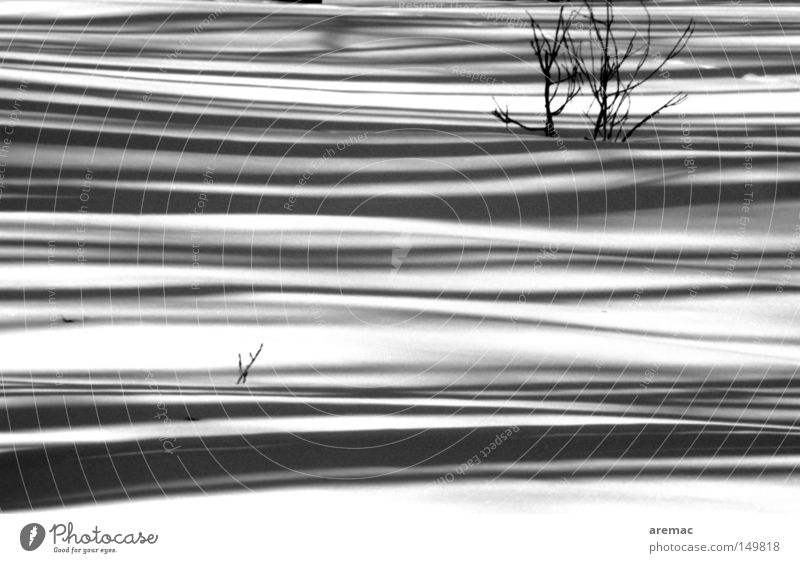 shadow play Snow Winter Cold White Black Shadow Abstract Landscape Black & white photo