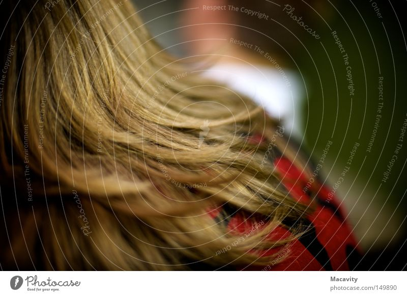 And then she left. Colour photo Shallow depth of field Rear view Beautiful Hair and hairstyles Far-off places Hairdresser Feminine Head Brunette Long-haired