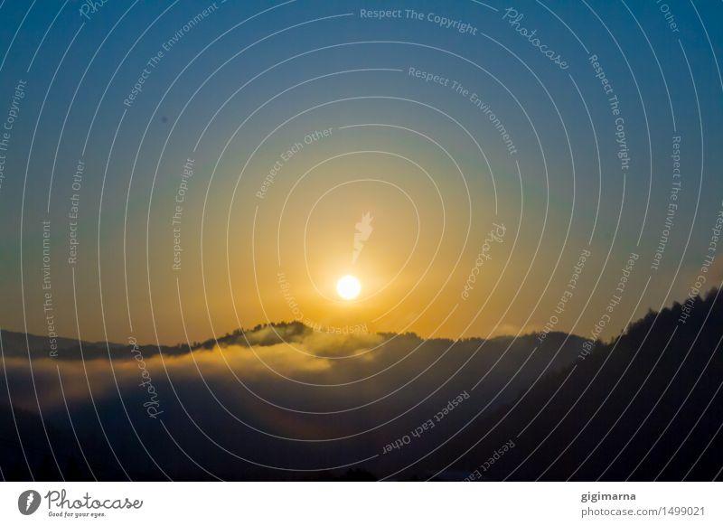 morning mood Vacation & Travel Trip Sightseeing Summer Sun Sunrise Sunset Sunlight Atmosphere Warm-heartedness Hope Exterior shot Morning Dawn Light Sunbeam