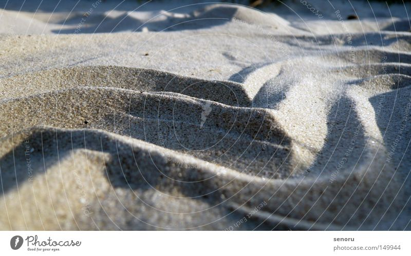 Dune at the Danish beach Beach Beach dune Coast sand waves Danebrog Srandt with waves Macro Dune Beach photo