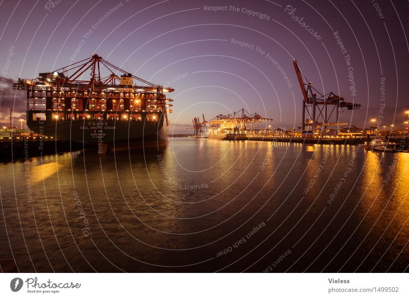 Safe in the harbour Hamburg Harbour Night Container Container ship Light Cargo-ship Erase