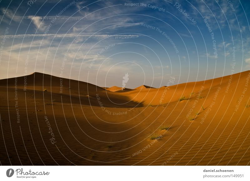 to warm up Desert Sand Dubai Oman United Arab Emirates Arabia Dune Red Yellow Blue Sky Dry Warmth Wind Environment Climate Vacation & Travel Travel photography