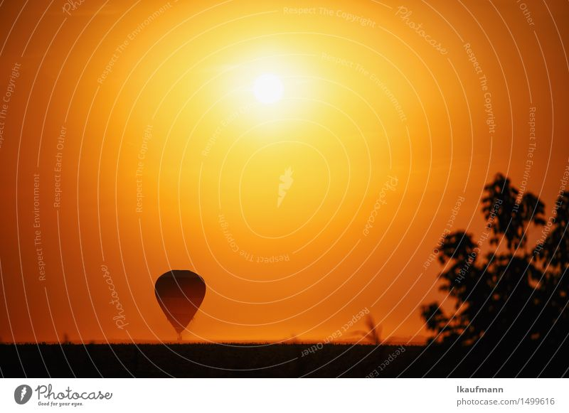 Hot air balloon at sunset Adventure Far-off places Freedom Sun Aviation Sky Horizon Sunrise Sunset Climate Beautiful weather Drought Aircraft Hot Air Balloon