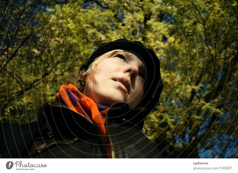 Woman Human being Nature Tree Face Vacation & Travel Leaf Yellow Life Relaxation Autumn Feminine Emotions Warmth Wind Time
