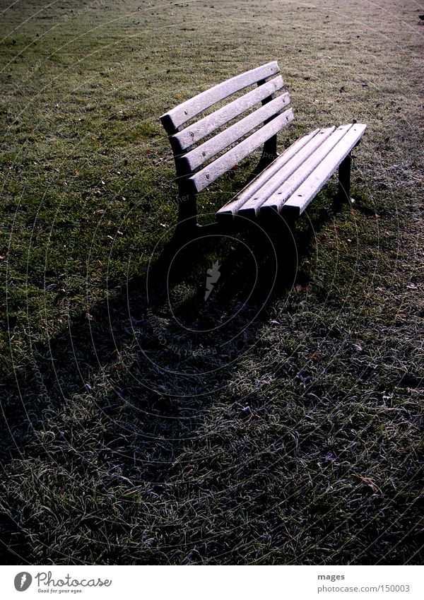 Winter Loneliness Cold Meadow Park Frost Lawn Bench Furniture November Hoar frost Park bench