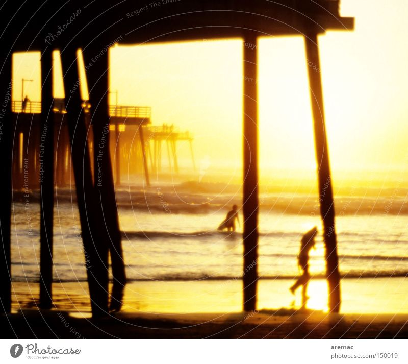 Water Vacation & Travel Ocean Beach Wood Coast Waves Swimming & Bathing USA Jetty Americas Surfing Surfer Promenade California Lanes & trails