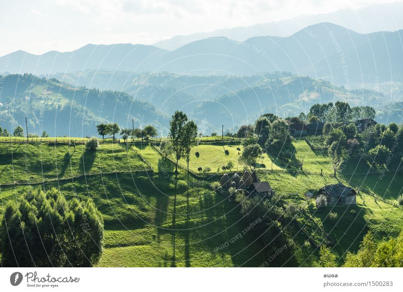 The green contour of the earth Nature Landscape Plant Sky Sunrise Sunset Summer Tree Meadow Hill Mountain Hut Relaxation Dream Blue Green Moody Peace