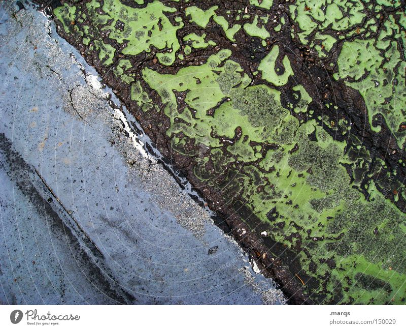 Old Green Blue Street Line Floor covering Asphalt Stripe Derelict Traffic infrastructure Across