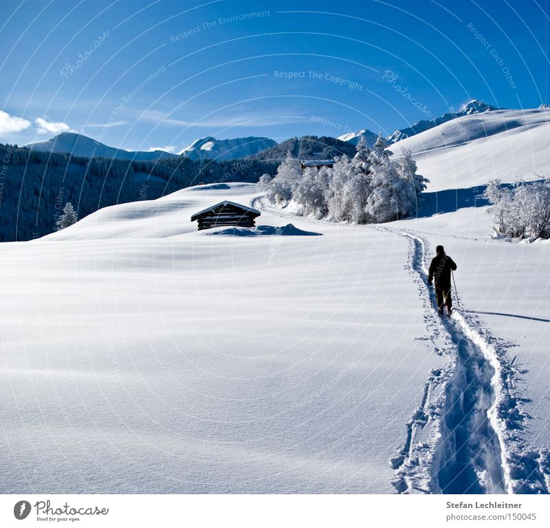 Up and at 'em! Fiss Ladis Austria Park Winter Shows Mountain Landscape Snowscape Federal State of Tyrol Deep snow Idyll Love of winter Winter's day