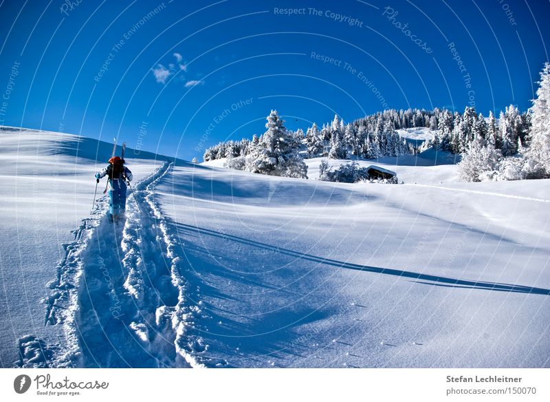 Winter Snow Mountain Village Austria Snowscape Federal State of Tyrol Winter forest Deep snow