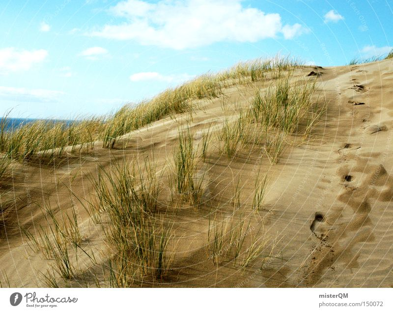 Nature Sky Ocean Summer Beach Vacation & Travel Relaxation Lanes & trails Coast Weather Success Discover Beach dune Dune Baltic Sea