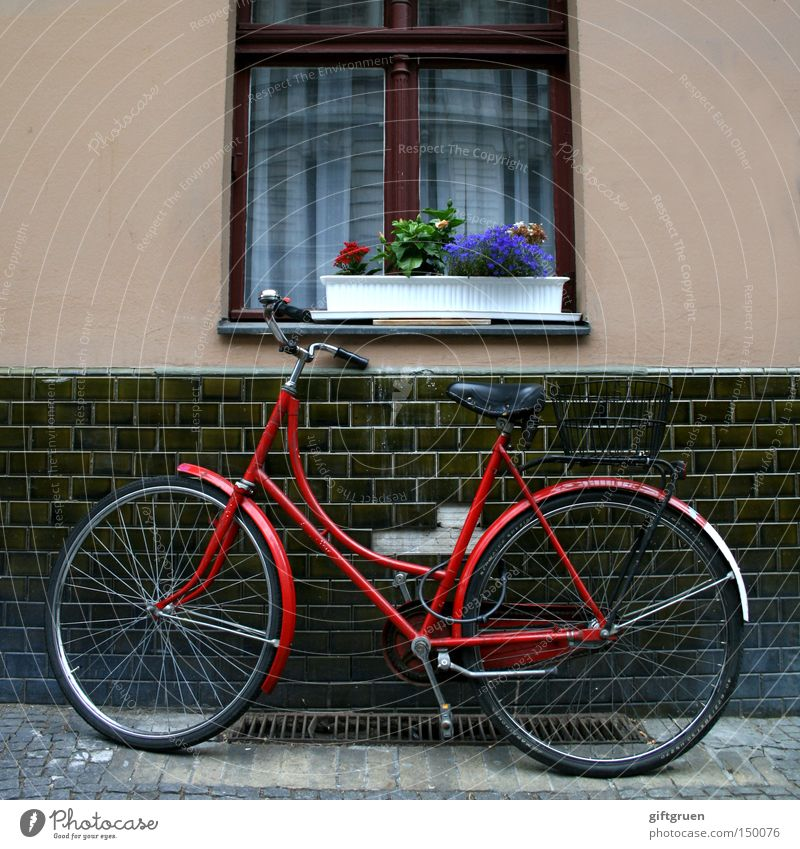 Flower Street Window Bicycle Transport Parking lot Lean House wall Window box