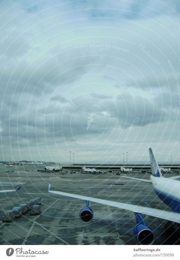 SFO International Airport San Francisco California USA Airplane Sky Clouds Gray Blue Cold Runway Gate
