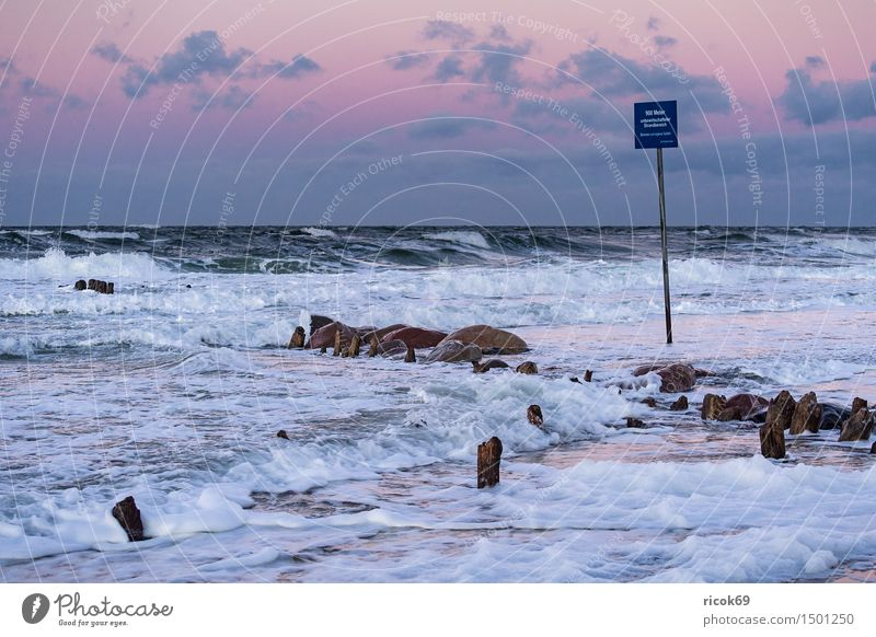 Stage at the coast of the Baltic Sea Relaxation Vacation & Travel Beach Ocean Waves Nature Landscape Water Gale Rock Coast Stone Wood Signage Warning sign
