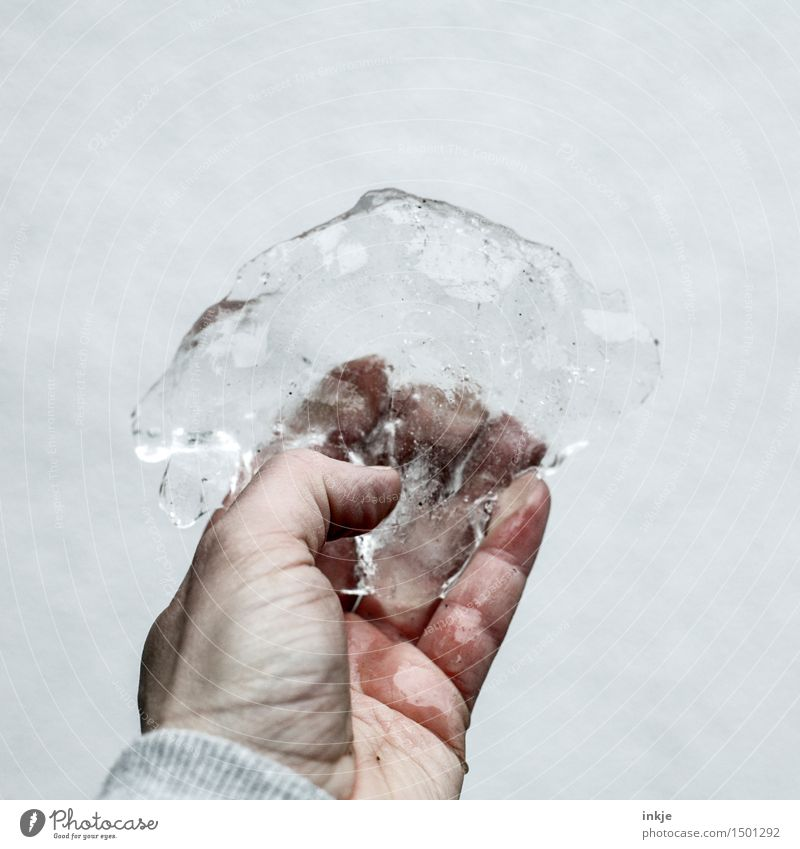 ice Lifestyle Leisure and hobbies Hand Elements Winter Ice Frost Ice floe To hold on Dirty Cold Wet Thaw Frozen Indicate Bright background Colour photo