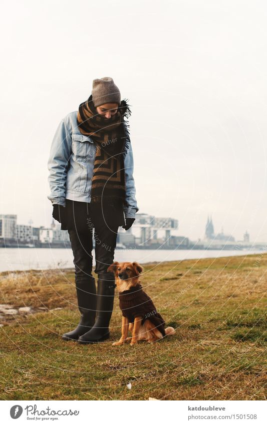 Take all the courage you have left Weather Dog Bravery Acceptance Trust Safety Protection Sympathy Love of animals Authentic Disciplined Endurance Interest
