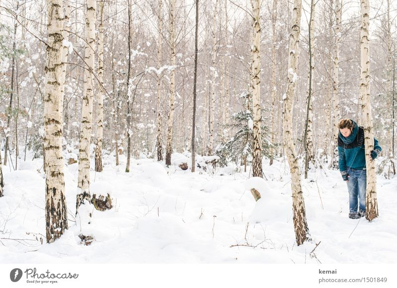 Spending my time with trees (I) Lifestyle Adventure Human being Feminine Woman Adults 1 30 - 45 years Environment Nature Winter Snow Tree Birch tree Birch wood