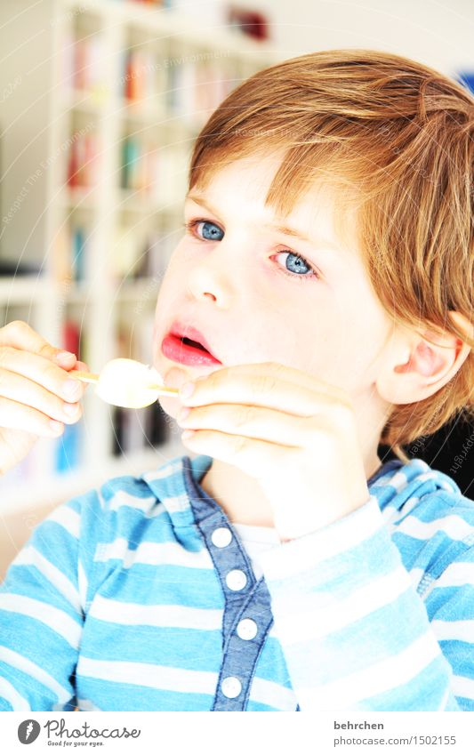 Human being Child Blue Beautiful Hand Face Eyes Cold Eating Boy (child) Family & Relations Hair and hairstyles Head Infancy Skin To enjoy