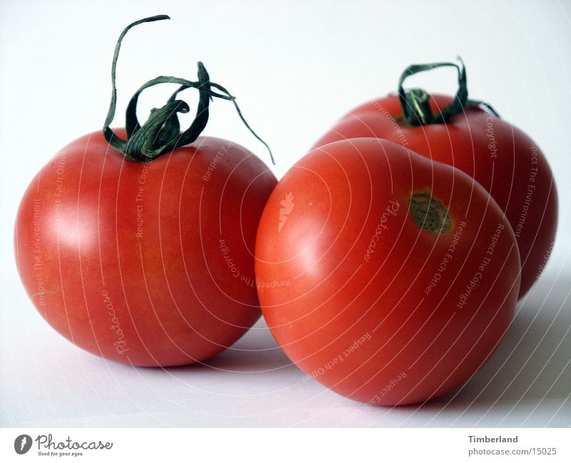 White Red Nutrition 3 Vegetable Tomato Bright background