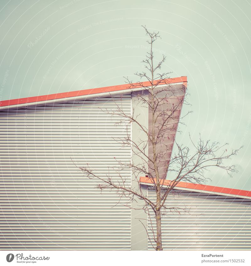. Sky Tree House (Residential Structure) Manmade structures Building Architecture Facade Roof Wood Metal Steel Line Stripe Cold Naked Blue Gray Red Design