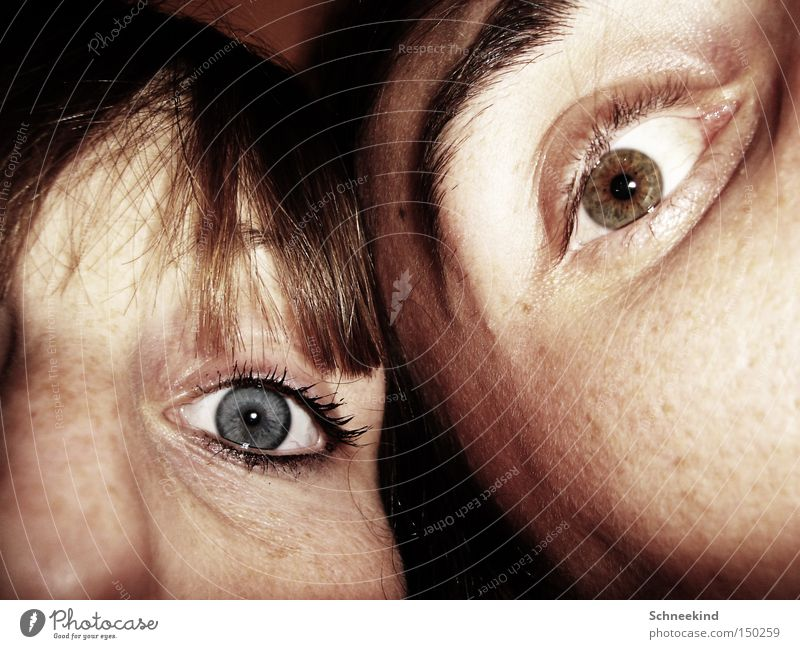 Woman Man Blue Joy Face Eyes Couple Brown Trust Half Eyelash Eyebrow