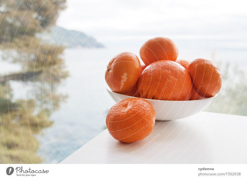 Vacation & Travel Healthy Eating Ocean Food photograph Fruit Fresh Nutrition Orange Vantage point Table Joie de vivre (Vitality) Italy Organic produce