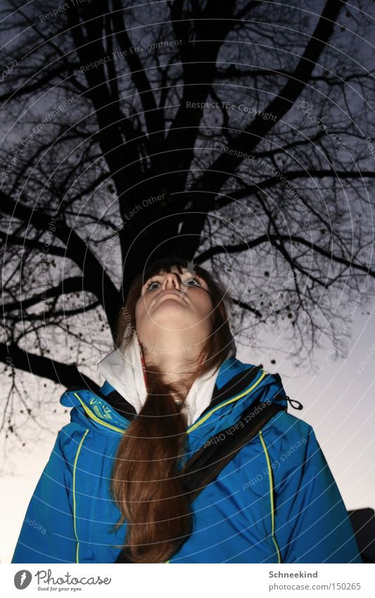 lady of nature Woman Tree Sky Portrait photograph Winter Jacket Branch Twilight To go for a walk Vantage point Peace Hair and hairstyles Face