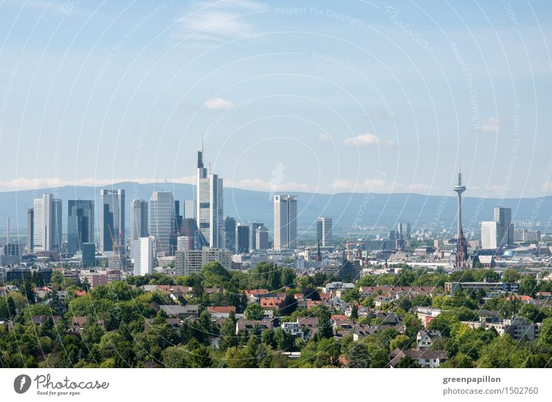 Frankfurt skyline with green belt Night life Going out Feasts & Celebrations Clubbing Dance Cycling Promenade To go for a walk Financial Industry Stock market