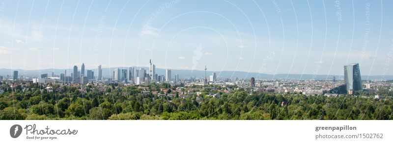 Frankfurt skyline Vacation & Travel Tourism Sightseeing City trip Nature Landscape Park Forest Main Germany Downtown Outskirts Old town Skyline High-rise